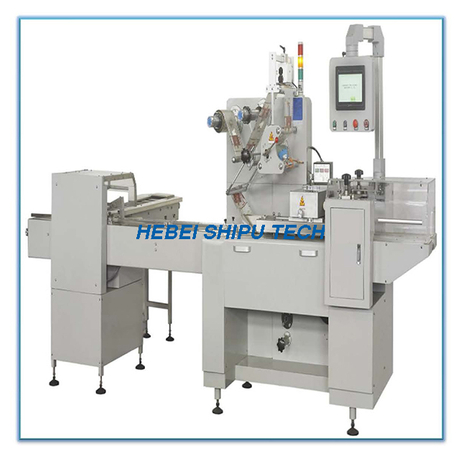 Pillow Packing Biscuit Packaging Machine China Manufacturer
