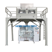 Powder Detergent Packing Machine Washing Powder Packaging Machine China Manufacturer